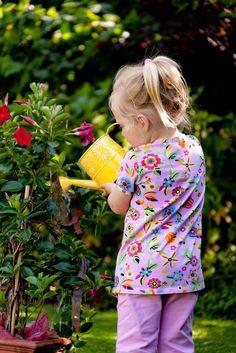 Abwehr von Trauermücken - Die Trauermücken schwirren um die Blumentöpfe. Hauptursache für diese Plage ist eine zu feuchte Erde. Mehr dazu hier: http://www.nachrichten.at/freizeit/haus_garten/Abwehr-von-Trauermuecken;art123,1542476 (Bild: OÖN)