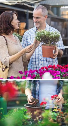 Giardinaggio online dating