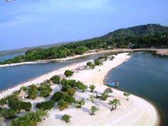 Ilha do Marajó - Pará - Brasil