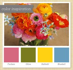 Pink, Green, Yellow & Blue Color Palette 34 by Sarah Hearts