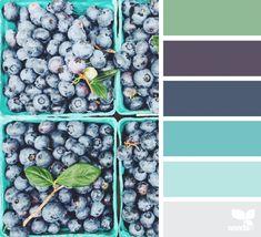 Berry Hues   design seeds   Bloglovin'