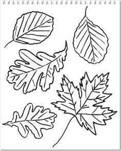 Image result for forme de frunze de colorat Adult Coloring Pages, Garden Inspiration, Doodles, Art, Yandex, Journal, Autumn, Leaves, Embroidery