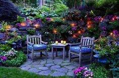 beautiful magical garden