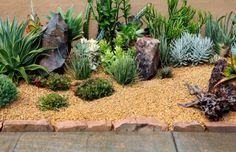 Gravel Mulch Succulent Garden