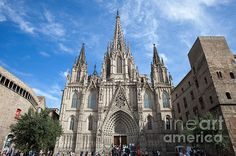 Barcelona Cathedral in Spain, Gothic Quarter (Barri Gotic) of the city. #barcelona #cathedral #barcelonacathedral #gothic #church #temple #christian #europe #landmark #monument #historic #historical #placetovisit #catalonia #spain #catalunya #architecture #architecturelovers #artprint #fineartprints #architecturephotography #barrigotic #gothicquarter #christianity #gothicstyle