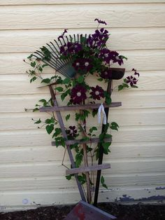 trellis with old garden tools
