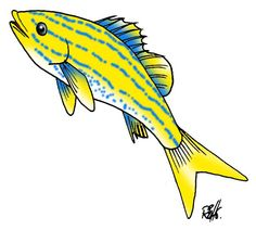 ,,, Clip Art, Fish, Sea, Pisces, Ocean