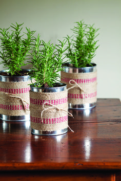 DIY Holiday Gift Plant Projects Don't give a boring Christmas plant! Make it persoanl with these DIY holiday gift plant projects you can do in an afternoon! Burlap Centerpieces, Holiday Centerpieces, Christmas Plants, Christmas Diy, Christmas Projects, Diy Holiday Gifts, Diy Gifts, Plant Projects, Diy Projects