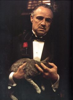 The cat held by Marlon Brando in the opening scene was a stray the actor found while on the lot at Paramount, and was not originally called for in the script. So content was the cat that its purring muffled some of Brando's dialogue, and, as a result, most of his lines had to be looped.