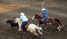 What's your favorite local rodeo? Give 'em a shout-out! pic.twitter.com/W6o3CXNl5M