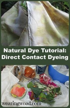 Natural dye tutorial for direct contact dyeing a silk scarf. The best way to play with unknown, but potential, natural dye plants.