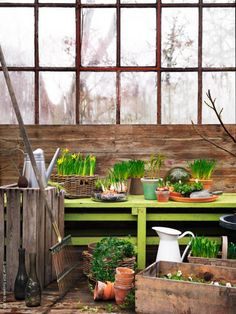 Keltainen talo rannalla: Ideoita kotiin ja puutarhaan