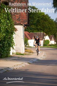 Du bist auf der Suche nach einer genussvollen Radtour für deinen nächsten Radurlaub? Wir empfehlen dir die Veltliner Sternfahrt in der Radregion Weinviertel. Entlang von mittelalterlichen Ruinen und malerischen Kellergassen entdeckst du eine der schönsten Weinlandschaften Österreichs per Fahrrad. Ausgangspunkt der Tour ist die Weinstadt Poysdorf: Hier erwarten dich neben einzigartigen Sehenswürdigkeiten, erstklassige Restaurants und gemütliche Winzerhöfe. © Weinviertel Tourismus / Schreiner Radler, Restaurants, Ruins, Tourism, Bicycling, Explore, Wine, Restaurant