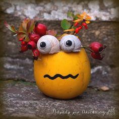 Podzimní dýňová dekorace - Autumn pumpkin decoration