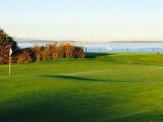 Greens on a Saturday evening | Victoria Golf Club, Canada #twitterphotos #yyjphoto #golfcourse #westcoast #victoriagolfclub
