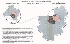 """Diagram of the Causes of Mortality in the Army in the East,"" in F. Nightingale, A Contribution to the Sanitary History of the British Army during the Late War with Russia (London: John W. Parker, 1859). Florence Nightingale, Order Of Canada, Science Programs, Mortality Rate, Future Trends, World Problems, British Army, Save Life, Becoming A Nurse"