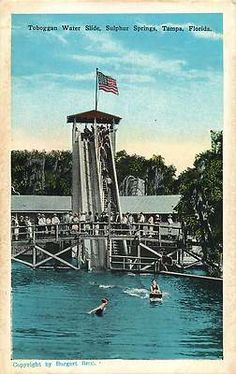 Vintage Postcard Toboggan Water Slide Sulphur Springs Tampa Florida FL   eBay