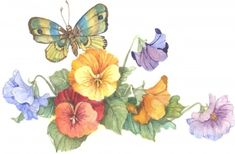 Butterfly with Pansies 6x8 watercolor | CShoresInc - Painting on ArtFire