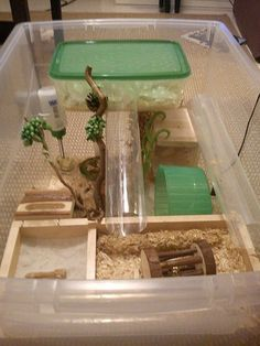 Really well organised RUB cage for a rodent Hamster Bin Cage, Gerbil Cages, Diy Guinea Pig Cage, Hamster Life, Guinea Pigs, Diy Hamster Toys, Hamster Stuff, Hedgehog Cage, Hedgehog Pet