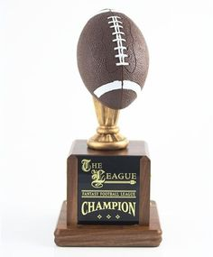 "13/"" Sport Riser Football Trophy Free Engraving"