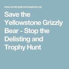 Save the Yellowstone Grizzly Bear - Stop the Delisting and Trophy Hunt