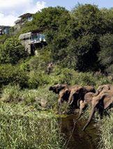 South Africa Singita game reserves