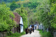 Erdély How Beautiful, Ecology, Hungary, Countryside, Europe, Cottage, House Styles, Places, Travel