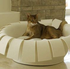 modern furniture design for pets, cats beds