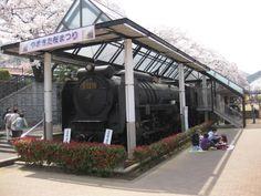 この鉄道公園は美しい桜の名所として知られており、 鉄道公園を含む山北駅の東側の樹齢約50年のソメイヨシノ約130本の桜並木は、 神奈川県の「かながわのまちなみ100選」に選ばれています。 また、昭和43年御殿場線全線の電化によって蒸気機関車としての使命を終えた、 D52-70が、鉄道公園内に記念展示されています。  鉄道公園に展示されているD52-70は、昭和43年8月1日、御殿場線全線に電車が走るようになりその勤めを終えました。 現在は、鉄道公園に保存され、山北駅鉄道公園保存委員会の手によって大切に維持管理されています。 D52-70号は、D52型蒸気機関車、D52型兄弟の70番目の生まれで、昭和19年4月に製造され、 山陽線、東海道線で働き、昭和26年2月、国府津機関区に配属になってからは御殿場線で活躍しました。