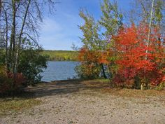 Camping information for Kehiwin Provincial Recreation Area with map & directions, includes photo gallery of campground, near Elk Point in Alberta My Town, Elk, Photo Galleries, Trees, Camping, River, Mountains, Outdoor, Moose