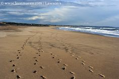 Endless empty beaches of the east coast. This is the beach at Mtunzini. I Am An African, Kwazulu Natal, East Coast, Empty, South Africa, Beaches, Safari, Heart, Water