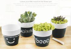 O Envio gratuito de 4 Peças de Volta À Escola Preto Placa Potes de Ervas Vasos Vasos de Plantas Em Miniatura DIY Quadro Mini Jardineiro(China (Mainland))