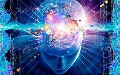 Salire rampe di scale e studiare ci conserva giovani nella mente Mens sana in corpore sano: l'antico aforisma latino tratto da un verso di Giovenale si rivela ogg cervello studiare materia grigia