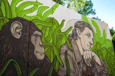 JANE GOODALL Jane Goodall, Valencia, Urban Art, Parks, Animales, Town Hall, Women