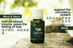 Cypress Young Living