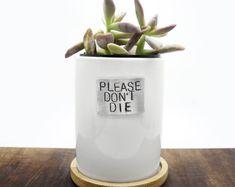 small planter, funny planter, please dont die, succulent planter, white planter, minimalist decoration, funny quote, home decor, ceramic, patterned plants