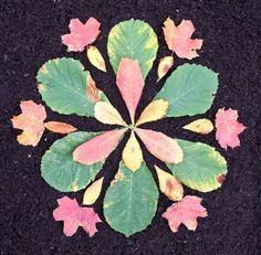 Leaf flower- The Artful Parent- Land Art for kids website