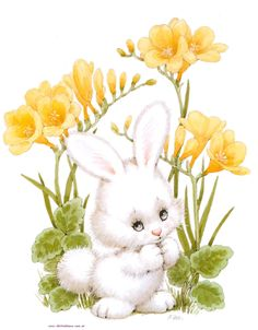 white bunny and yellow flowers - Conejos