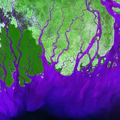 The Ganges River delta empties into the Bay of Bengal.