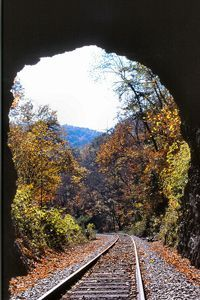 Natural State Park, Virginia
