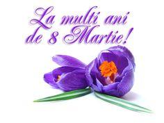 8 martie imagini frumoase - Google keresés Basket Flower Arrangements, 8 Martie, Art Nouveau Flowers, 8th Of March, Months In A Year, Spring Flowers, Holiday, Crafts, Happy Birthdays