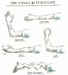 """aspiringauteur: Arm signals for bicyclists by artist Wendy MacNaughton (previously), from Robin Sloan's fantastic NYT piece on biking and """"the wiggle of least resistance. How To Make Drawing, Drawing Tips, Bike Poster, Bicycle Art, Bicycle Safety, The Wiggles, Cycling T Shirts, Cycle Chic, Bike Chain"""