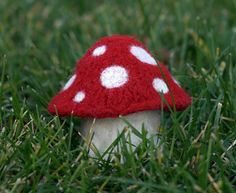 These little mushrooms knit up quickly and easy to make no matter your skill level. I've created five simple cap patterns and two stem patterns that you can mix and match to make a whole mushroom garden. Use natural colors and needle felted details to create realistic looking mushrooms or bright colors for a more psychedelic look. These would look cute displayed on a shelf and also make great ornaments.