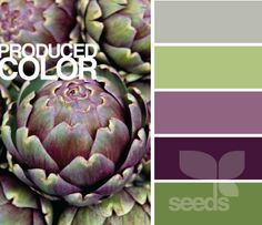 My new kitchen palette...but with cream instead of gray #Green #Purple love this palette
