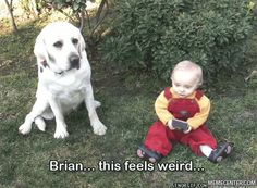 Dog Baby Memes. Best Collection of Funny Dog Baby Pictures