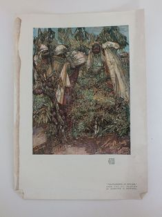 "Edwardian unframed colour Art print from an early 1900s issue of the Studio Magazine. Printed on ivory coloured paper.  No printing to reverse.  Sheet measures approx 11.00"" x 7.625"" (28.00 cms x 19.50 cms).Good clean and tidy condition."