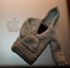 hoodie for your ipod!!