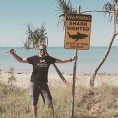 #shark around! Better #knit #australia #visitqueensland #knittersoftheworld #knittingaroundtheworld