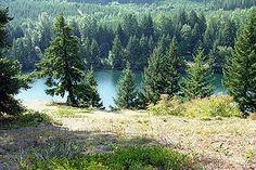 Lake Easton Scenic View