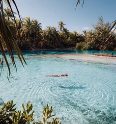 Yes please. Beautiful and tranquil looking! Supposedly this is in Tahiti and you can rent your own private beach. Yes please. Beautiful and tranquil looking! Supposedly this is in Tahiti and you can rent your own private beach. Places To Travel, Travel Destinations, Places To Visit, Outdoor Reisen, Destination Voyage, Photos Voyages, Travel Aesthetic, Beach Aesthetic, Wanderlust Travel